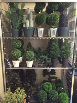 Artificial Plants In Variety Of Sizes And Shapes